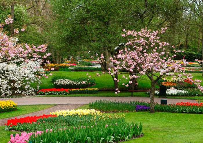 construcao jardins, construção e manutenção de jardins ou espaços verdes