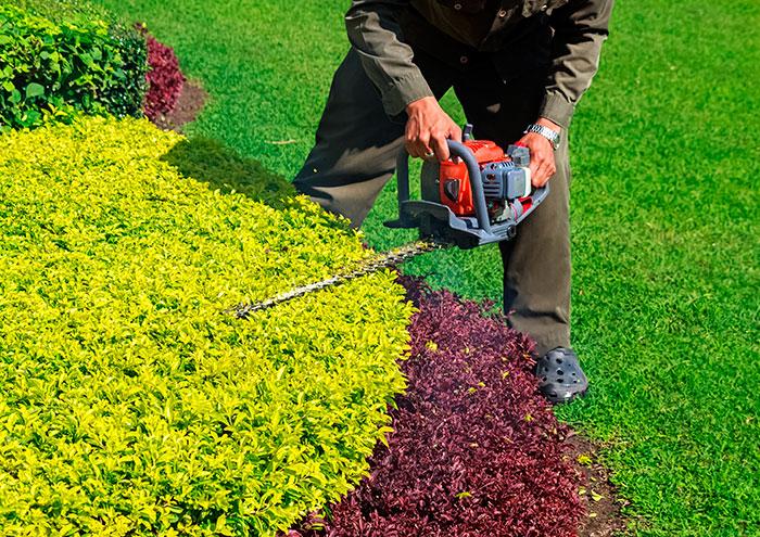 Manutenção de jardins, Manutenção de espaços verdes, visitas semanais ou quinzenais